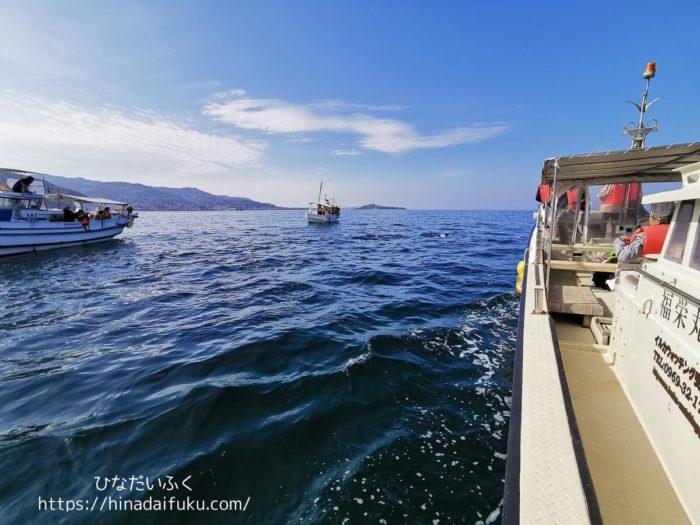 イルカウォッチングの小舟