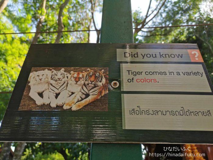タイガーキングダムの豆知識
